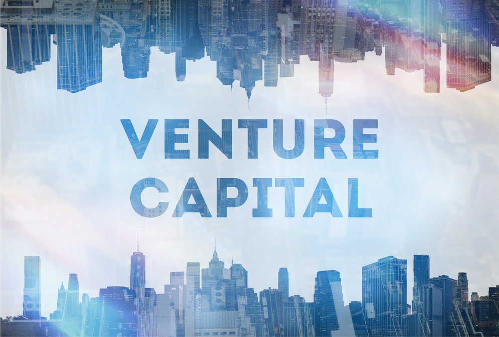 Start-Ups: What Venture Capitalists Are Looking For